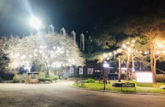 캠퍼스 야간 풍경